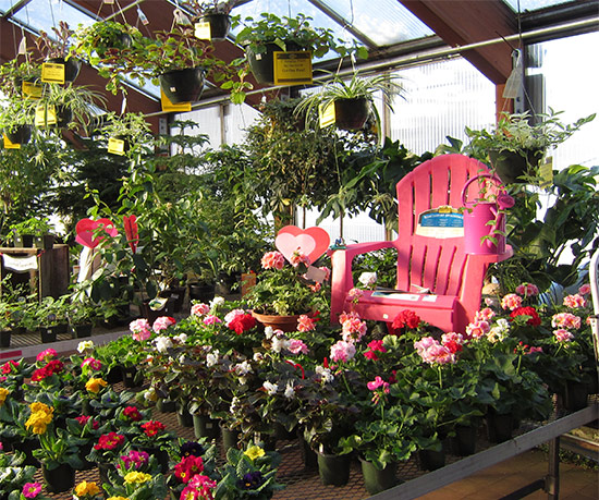 True Value Company Open a Store Garden Centers Reasons to Own